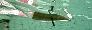 kai linde, rognan, under water study, wanggaard
